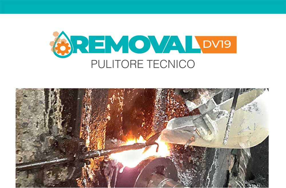 REMOVAL DV 19 - PULITORE INDUSTRIALE